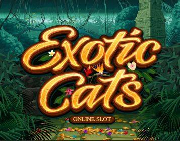 Microgaming gokkast: Exotic Cats logo in gouden letters met jungle achtergrond
