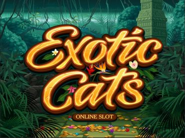 Microgaming gokkast: Exotic Cats logo in gouden letters met jungle achtergrond